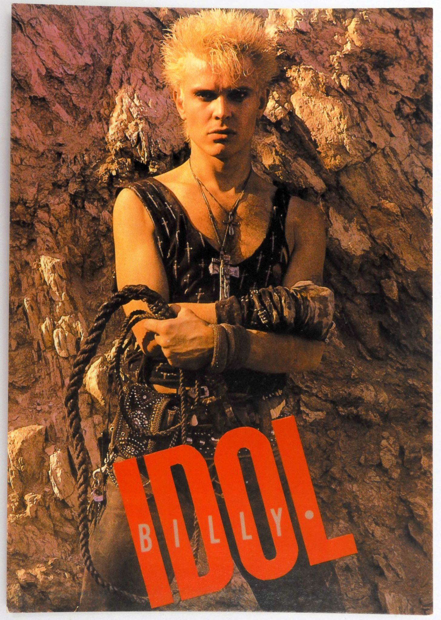 8a6a3d4300a89 Billy Idol - 'Billy with Whip' Postcard